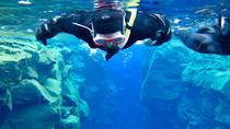 Snorkeling Tours from Safaga Port, Safaga, Ports of Call Tours