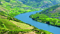 Douro Valley Including Lunch and Wine Tasting Small-Group Day Trip with Optional River Cruise, ...