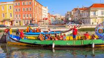 Private Half Day Tour of Aveiro from Porto, Porto, Private Day Trips