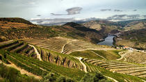 Private Tour: Douro Vinhateiro from Porto with Wine Tasting, Porto, Private Sightseeing Tours