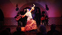 Tapas and Flamenco Show at Tablao Flamenco Cordobes, Barcelona, City Tours