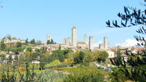 Private walking tour of San Gimignano with the best gelato, San Gimignano, Private Sightseeing Tours