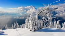 Small-Group Capilano Suspension Bridge and Grouse Mountain from Vancouver, Vancouver, Half-day Tours
