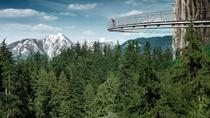 Small-Group Capilano Suspension Bridge and Vancouver City Tour, Vancouver, City Tours