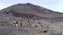 Hike to the Pacaya Volcano - Private Tour, Guatemala City, Hiking & Camping