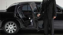 Private Arrival Transfer from Adnan Menderes Airport to Izmir City Center Hotels, Izmir