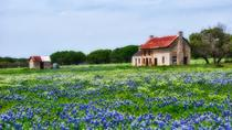 Texas Hill Country und LBJ Tour von San Antonio, San Antonio, Day Trips