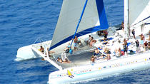 Saona Island Excursion by Catamaran or Speedboat, Punta Cana, Day Cruises