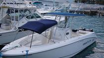 Halbtages-Charter in Nassau, Nassau, Private Sightseeing Tours