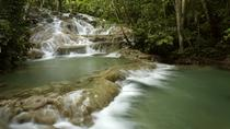 Dunn's River Falls Private Tour From Falmouth, Falmouth