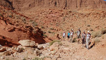 A Hiking Trip of 5 days with Accommodation from Tinghir, Marrakech, Hiking & Camping