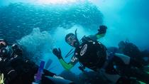 7 Days Diving and Hiking on the Galapagos Islands, Galapagos Islands, Hiking & Camping