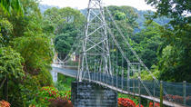 Private Kandy City Tour Including Peradeniya Royal Botanical Gardens, Colombo, Day Trips