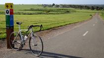 McLaren Vale Shiraz Trail Cycling Tour from Adelaide, Adelaide, City Tours
