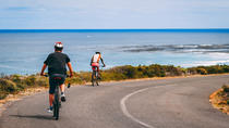 Cape Point Biking and Hiking Tour from Cape Town, Cape Town, Day Trips