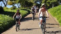 Constantia Wine Valley Bike Tour in Cape Town , Cape Town, Wine Tasting & Winery Tours