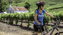 Franschhoek Vignerons Sip and Cycle Bike Tour from Cape Town, Cape Town, Wine Tasting & Winery Tours