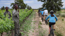 Franschhoek Vignerons Sip and Cycle Bike Tour vanuit Kaapstad, Cape Town, Wine Tasting & Winery Tours