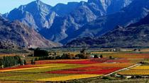 Paarl Valley Wines and Culture Bike Tour from Cape Town , Cape Town, Bike & Mountain Bike Tours