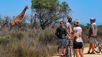 Safari Bike Tour from Cape Town, Cape Town, Private Sightseeing Tours
