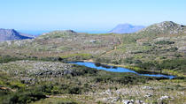Silvermine Nature Reserve Hike from Cape Town , Cape Town, Bike & Mountain Bike Tours