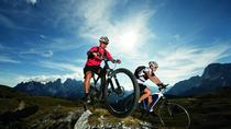 Single Track Bike Tour from Cape Town , Cape Town, Bike & Mountain Bike Tours