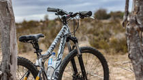 West Coast San Bushman Cycle Tour from Cape Town, Cape Town, Day Trips