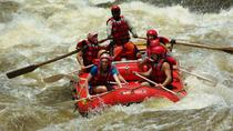 Excursion d'une demi-journée en rafting en Zambie, Livingstone