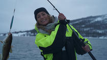 Fishing Trip with Luxury Catamaran in Tromso, Tromso, Fishing Charters & Tours
