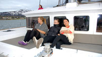 Fjord Cruise with Luxury Catamaran in Tromso, Tromso, Day Cruises