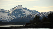 Fjord Cruise with Luxury Catamaran in Tromso