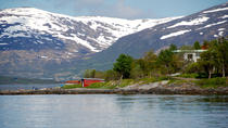 Sightseeing 3 Islands with Cabincruiser in Tromso, Tromso