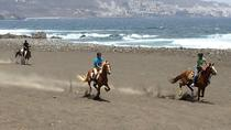 Private Half-Day Beach Horse Riding Tour in Gran Canaria, Gran Canaria, Horseback Riding