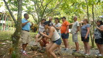 Half-Day Dominican Republic Safari Tour from Punta Cana , Punta Cana, Half-day Tours