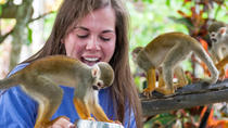 Monkeyland Safari and Zip Line Tour in Punta Cana, Punta Cana, Safaris