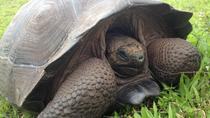 6-Day Galapagos Islands Highlights Tour, Galapagos Islands, Multi-day Tours