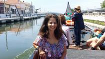 The Little Venice of Portugal: Aveiro Small Group Tour with Typical Boat Ride, Porto, Half-day Tours