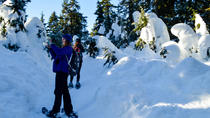 Dog Mountain Snowshoeing and Photography Tour , Vancouver, Ski & Snow