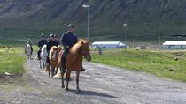 The Valley Ride Private HORSE RIDING Tour, Isafjordur, 4WD, ATV & Off-Road Tours