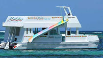 Private Malibu Party Boat with DJ, Punta Cana, Custom Private Tours