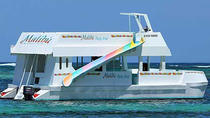 Punta Cana Malibu Party Charter with DJ, Punta Cana, Day Cruises