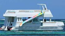 Punta Cana Malibu Party Charter with DJ, Punta Cana, Day Cruises