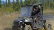 Alaskan Back Country Side by Side ATV Adventure con comida, Parque Nacional de Denali, Tours en vehículos todoterreno y 4x4