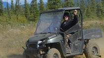Alaskan Back Country Side by Side ATV Adventure with Meal, Denali National Park, Air Tours
