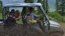 Black Diamond Treasure Hunt Excursion with Back County Dining, Denali National Park, 4WD, ATV & ...