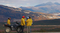 Classic ATV Adventure with Back Country Dining, Denali National Park, 4WD, ATV & Off-Road Tours