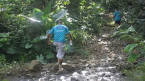Let's do hiking in Punta Cana, Punta Cana, Hiking & Camping