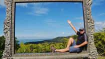 Piha Beach and Rainforest Day Tour, Auckland, Half-day Tours