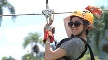 Canopy Zipline Adventure in Punta Cana, Punta Cana, Ziplines