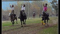 Estancia Gaucho 'Santa Susana' Day Tour from Buenos Aires, Buenos Aires, Attraction Tickets